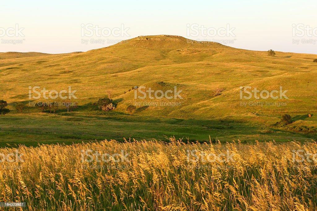 Panoramic landscape of wheat fields in Nebraska stock photo