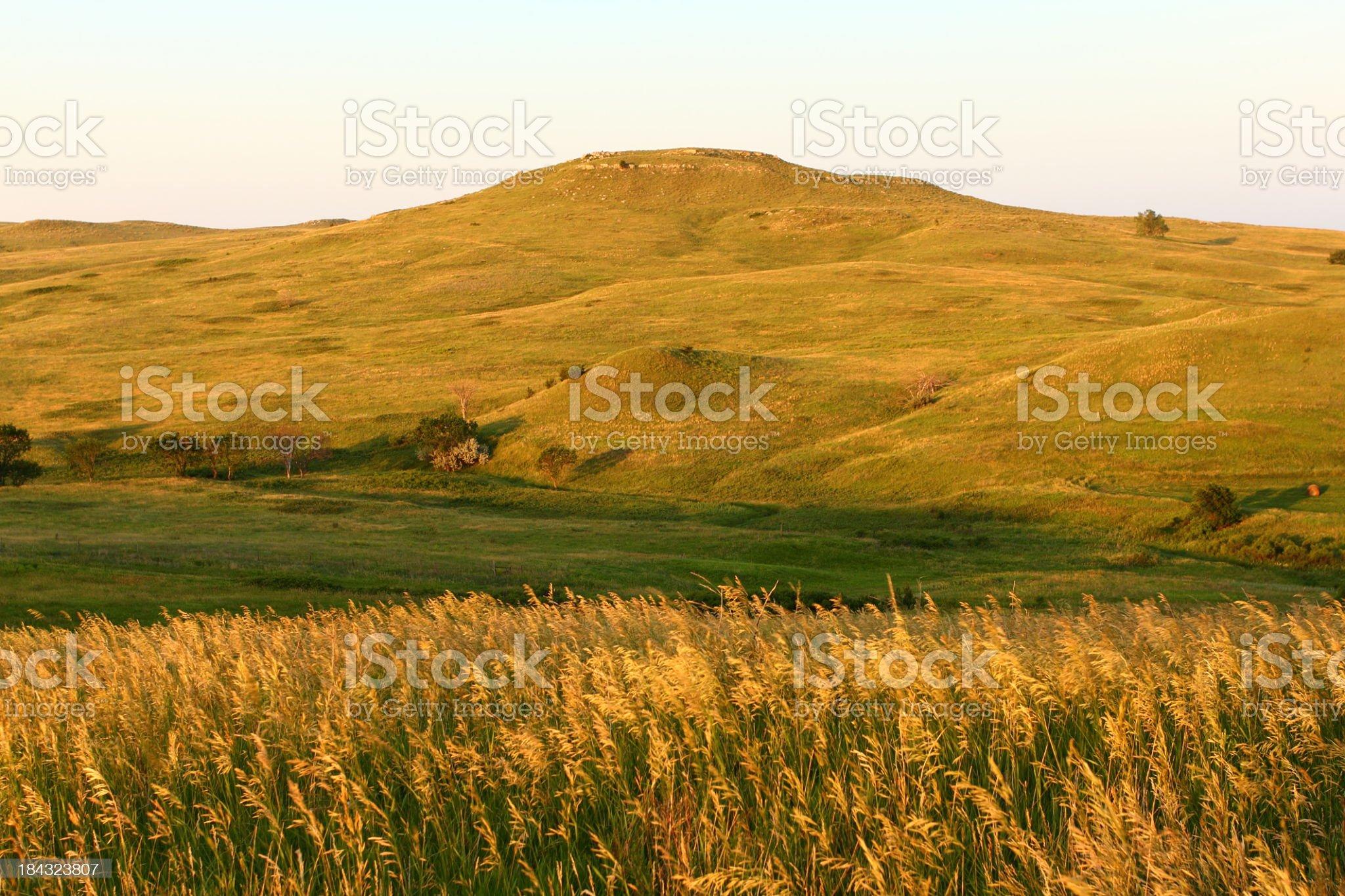 Panoramic landscape of wheat fields in Nebraska royalty-free stock photo