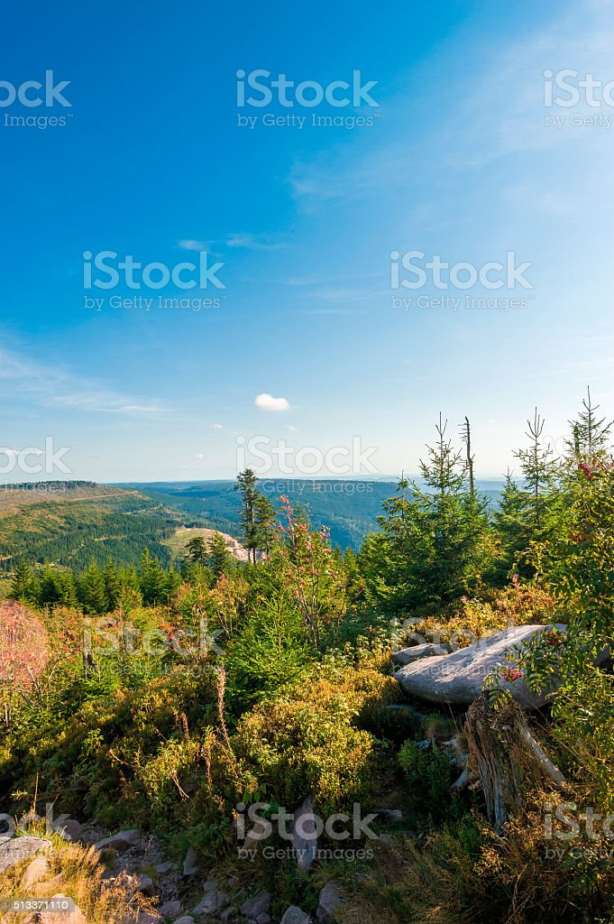 Panoramic landscape on the Hornisgrinde stock photo