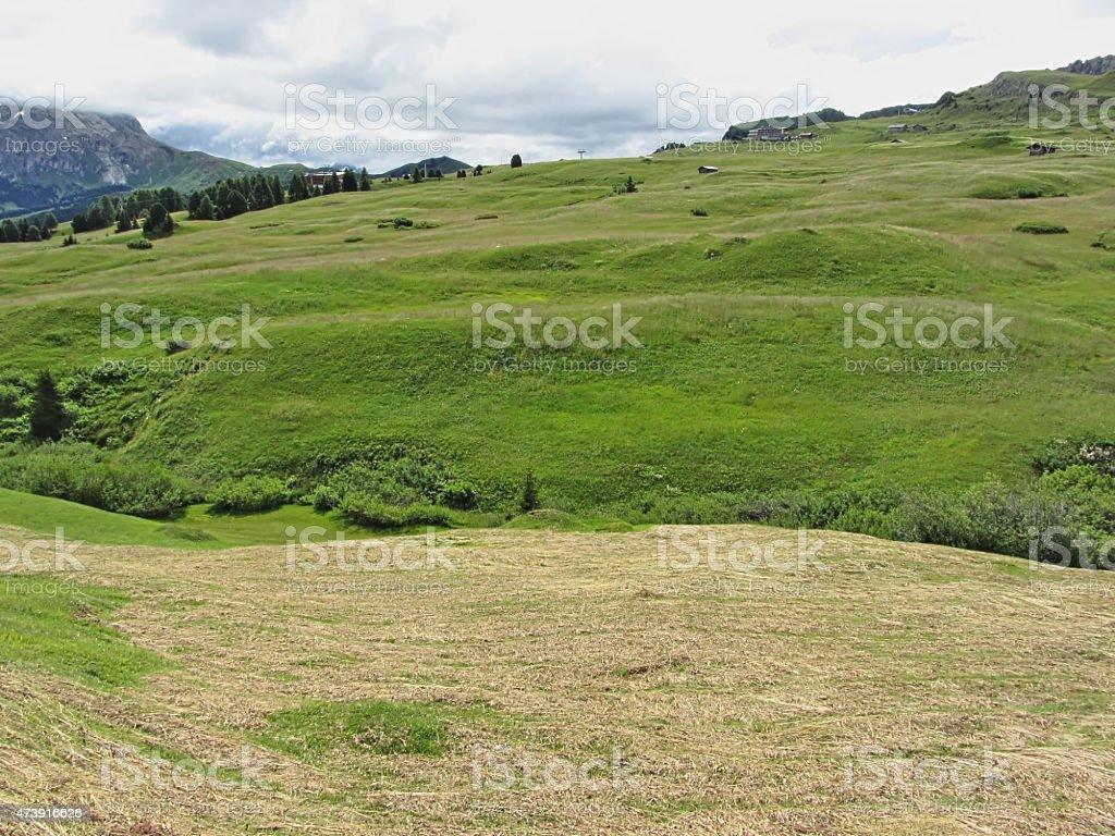 Panoramic mountain view stock photo