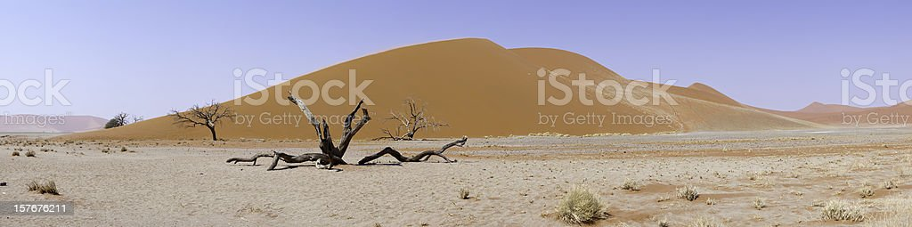 Panoramic of Dune 45, Sossusvlei, Namibia stock photo
