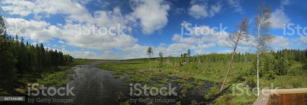 Panoramic outlook over a Swedish lake near Tullingsaas stock photo