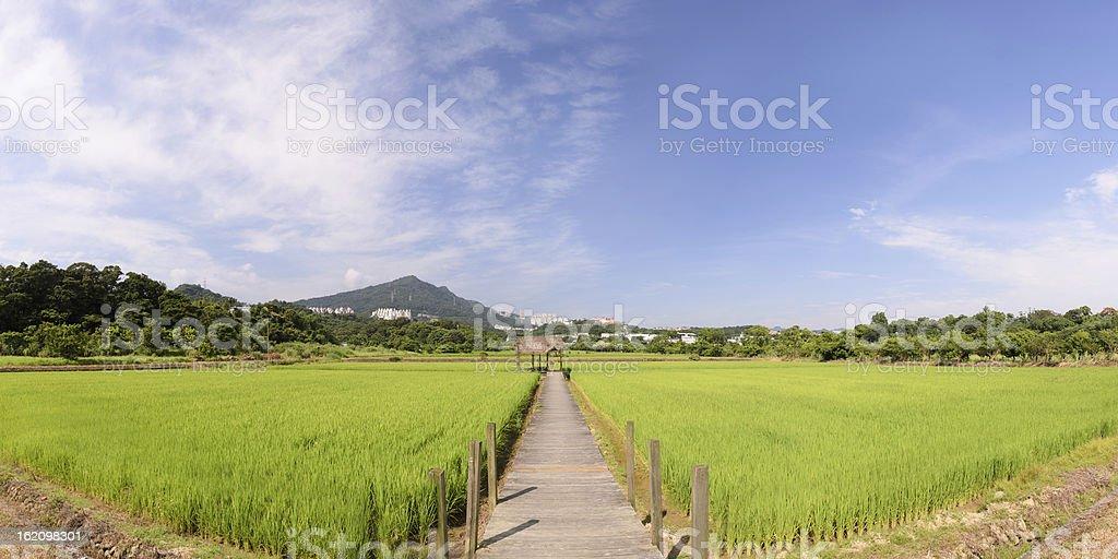 Panoramic rural scenery royalty-free stock photo