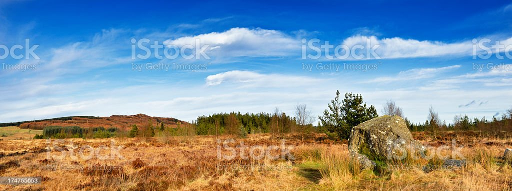 Panoramic Scottish rural scene with hills and woodland stock photo