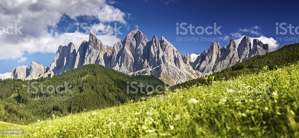 Panoramic shot of green field against mountains. stock photo