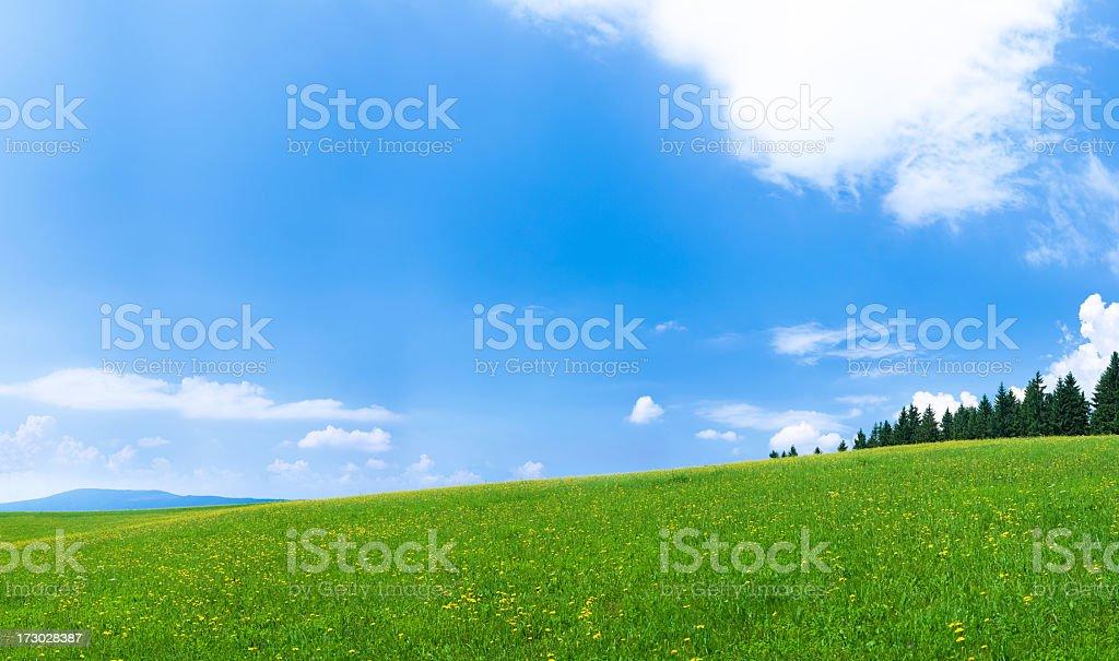 Panoramic spring landscape 114MPix XXXXL royalty-free stock photo