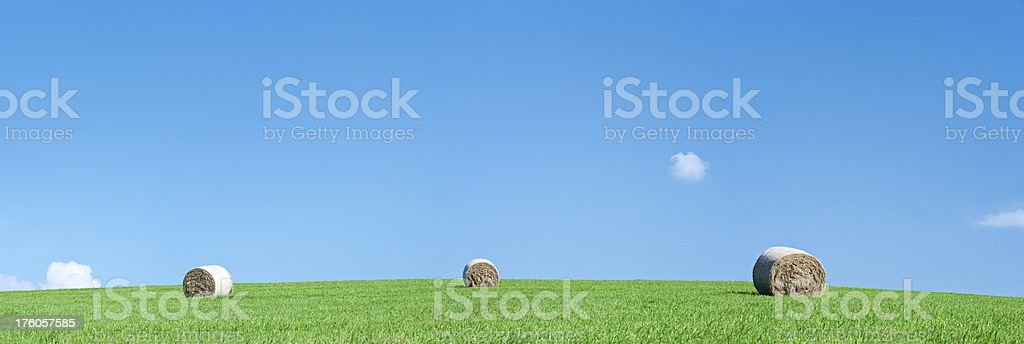 Panoramic spring landscape 39MPix XXXXL size - hay bales, meadow royalty-free stock photo