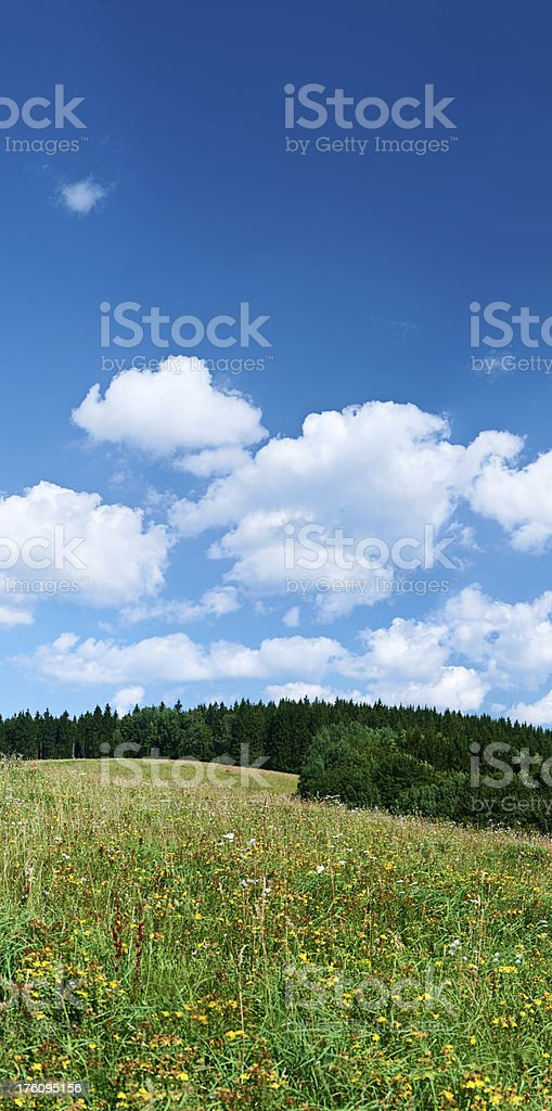 Panoramic spring landscape 48MPix XXXXL size - meadow, blue sky royalty-free stock photo