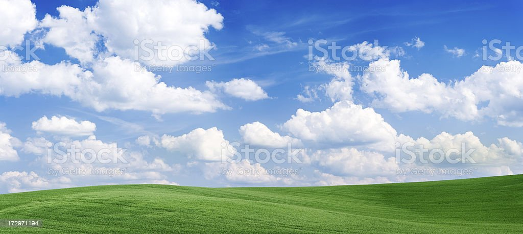 Panoramic spring landscape 55MPix XXXXL - green field, blue sky royalty-free stock photo