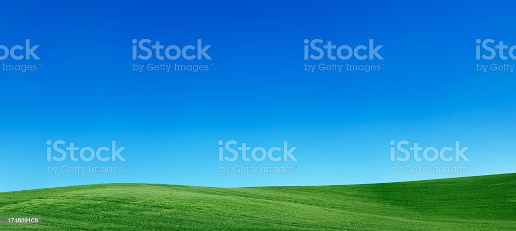 Panoramic spring landscape 55MPix  XXXXL meadow, blue sky royalty-free stock photo