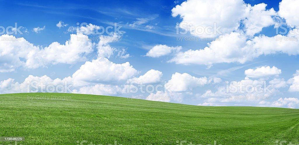 Panoramic spring landscape 60MPix XXXXL meadow, blue sky, clouds royalty-free stock photo