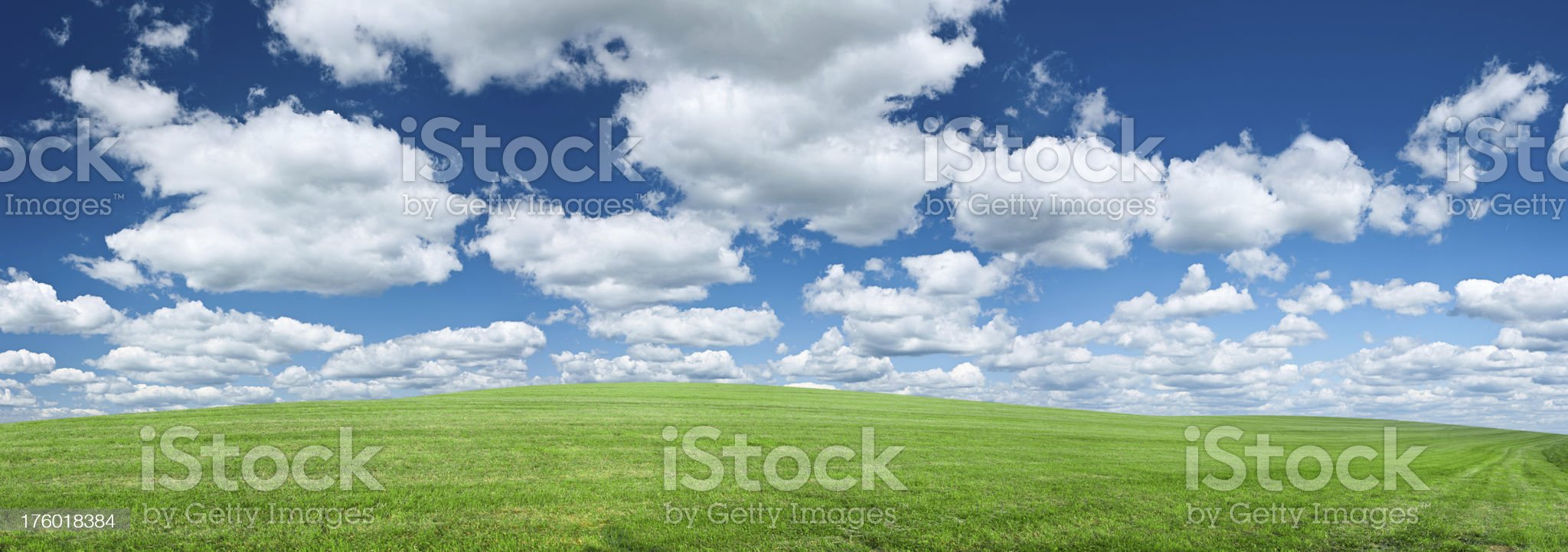 Panoramic spring landscape 63MPix XXXXL - meadow, blue sky royalty-free stock photo
