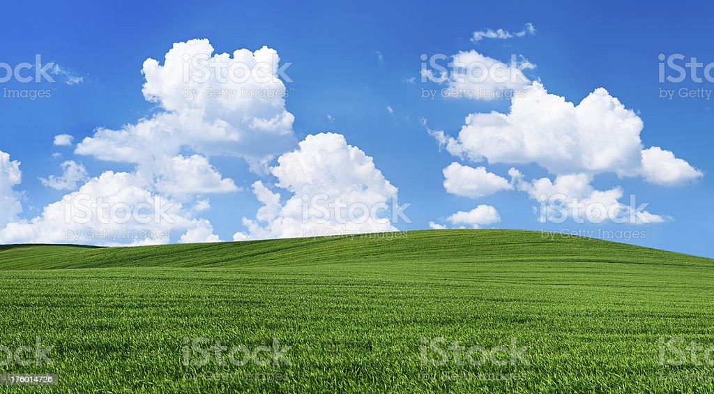 Panoramic spring landscape 66MPix XXXXL - meadow, blue sky, clouds royalty-free stock photo