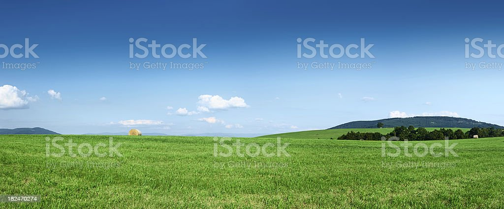 Panoramic spring landscape - 74MPix XXXXL meadow, forest, blue sky royalty-free stock photo