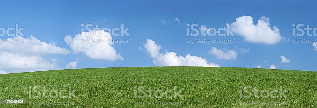 Panoramic spring landscape 77MPix XXXXL size - meadow, blue sky royalty-free stock photo