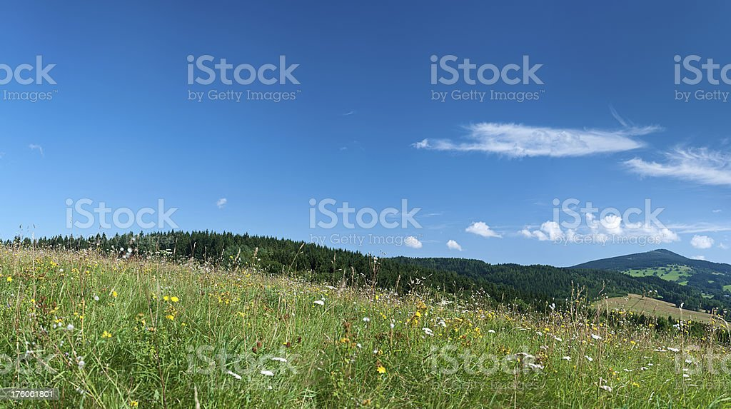 Panoramic spring landscape 79MPix XXXXL size - meadow, blue sky stock photo