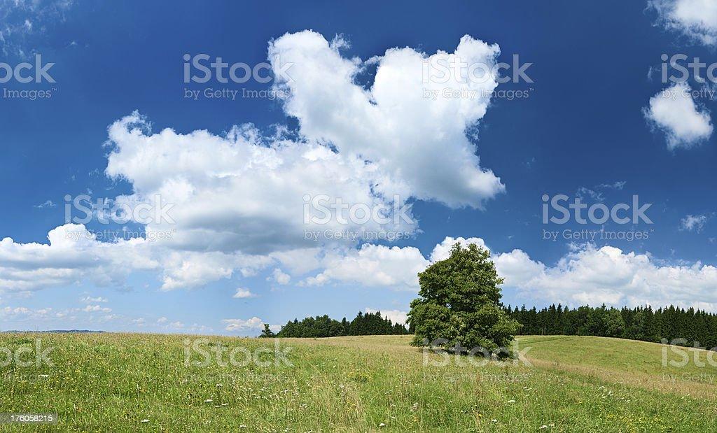 Panoramic spring landscape 88MPix XXXXL size - highlands, blue sky royalty-free stock photo