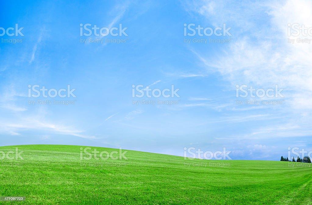 Panoramic spring landscape 95MPix XXXXL meadow, blue sky, clouds royalty-free stock photo