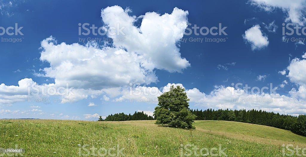 Panoramic spring landscape 96MPix XXXXL size - highlands, blue sky royalty-free stock photo