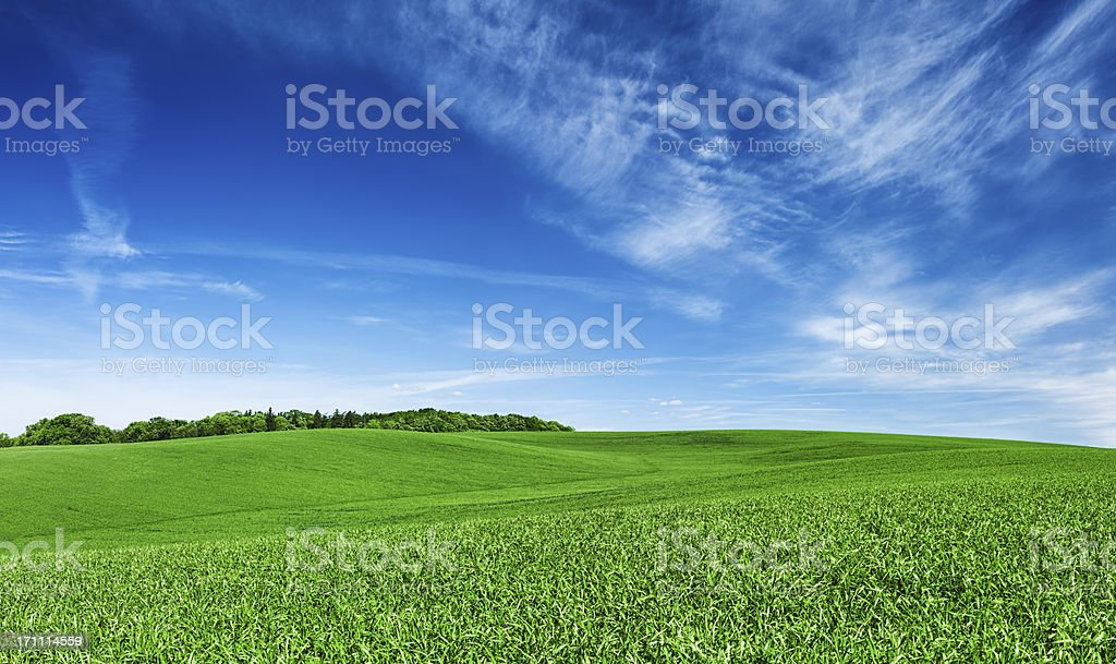 Panoramic spring landscape XXXXL 45 MPix- green field, blue sky stock photo