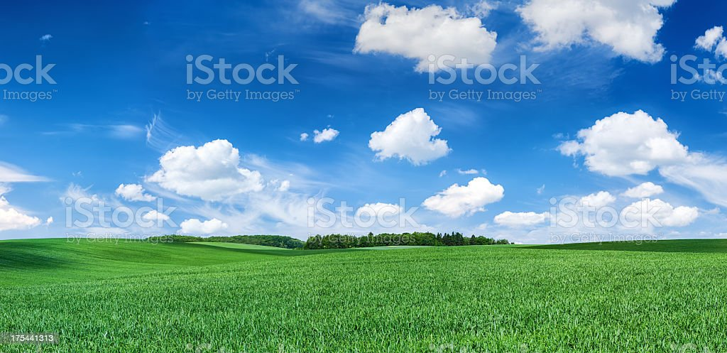Panoramic spring landscape XXXXL 60 MPix- green field, blue sky royalty-free stock photo