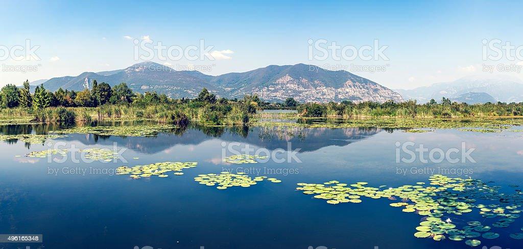 Panoramic Torbiere del Sebino peat bog, near Brescia, Italy stock photo