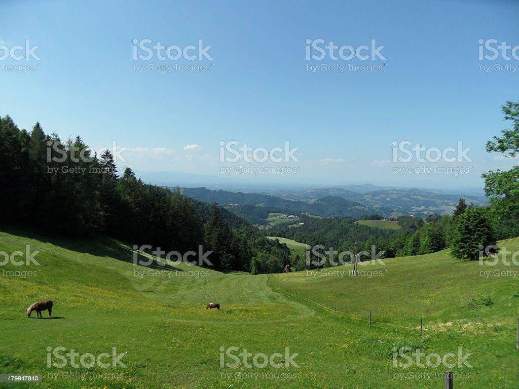 panoramic view into Styria  from sveti Duh in Slovenia stock photo