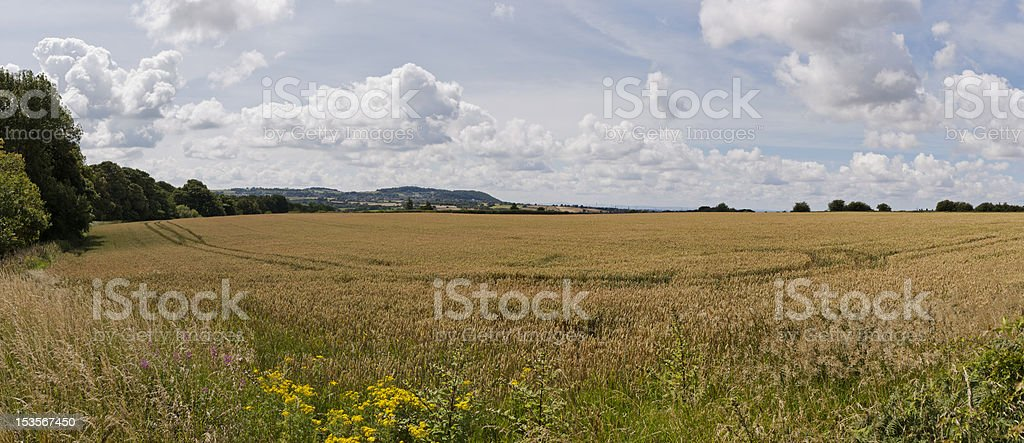 Panoramic view of a Cheshire landscape royalty-free stock photo