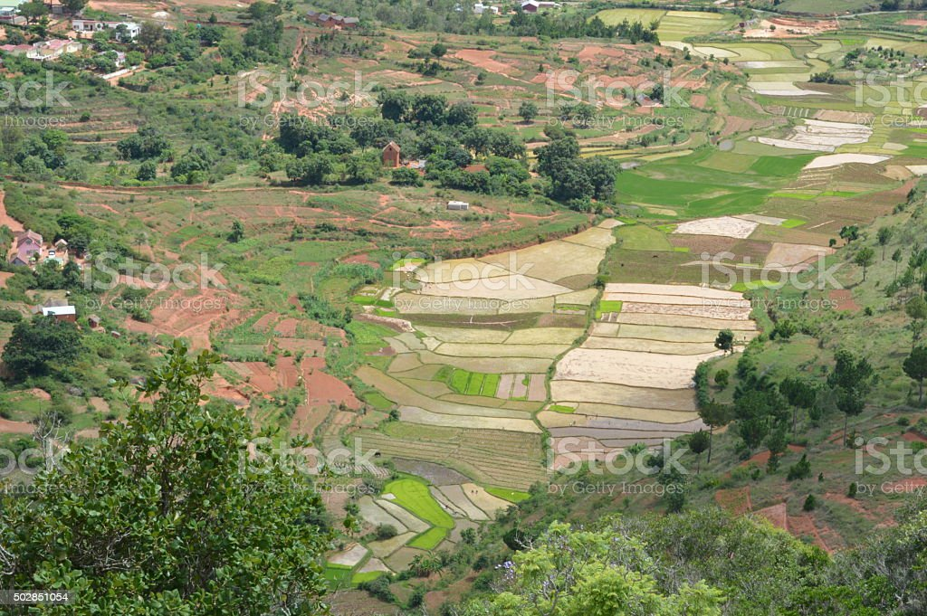 Panoramic view of a rice shaped Madagascar stock photo