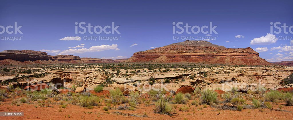Panoramic view of Arizona desert royalty-free stock photo