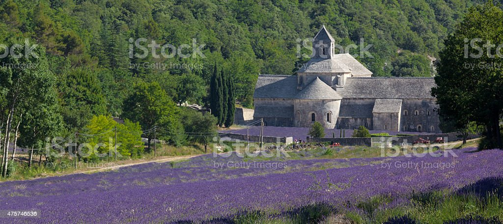 Panoramic view of blooming lavender fields and typical Provence abbey stock photo