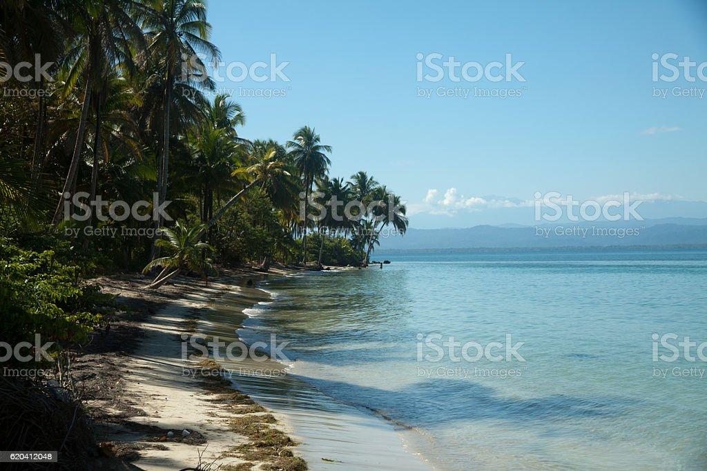 Panoramic view of Boca del toro beach stock photo
