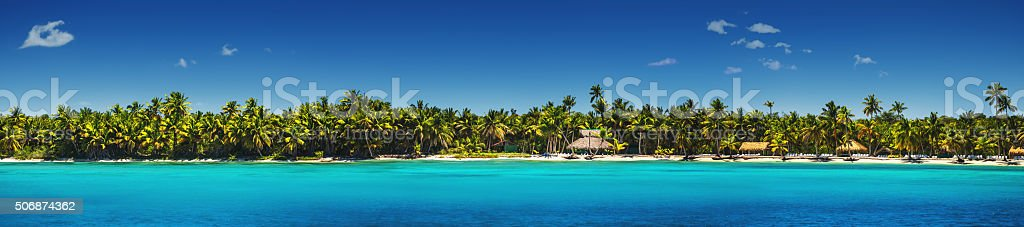 Panoramic view of Exotic Palm trees on the tropical beach stock photo