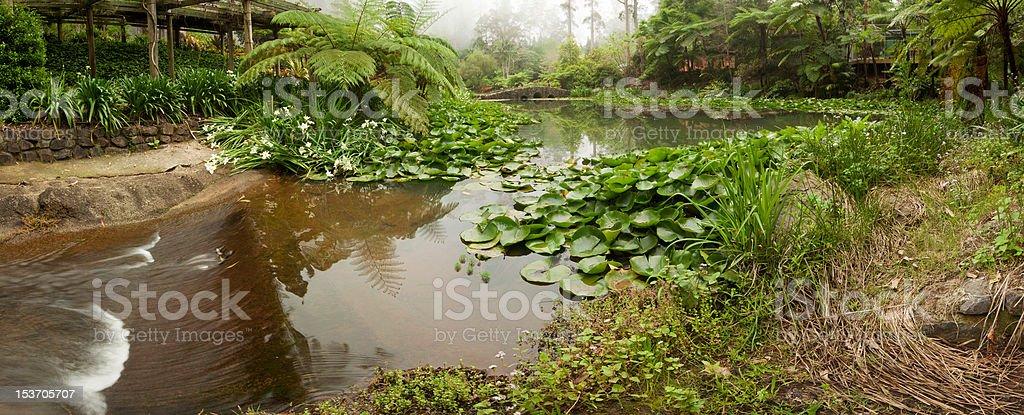panoramic view of garden royalty-free stock photo