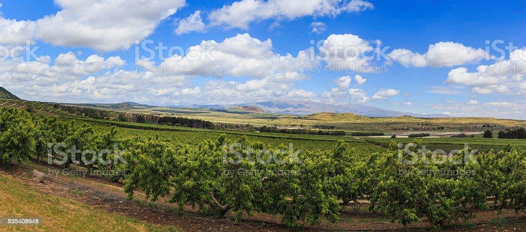 Panoramic view of  golan heights stock photo