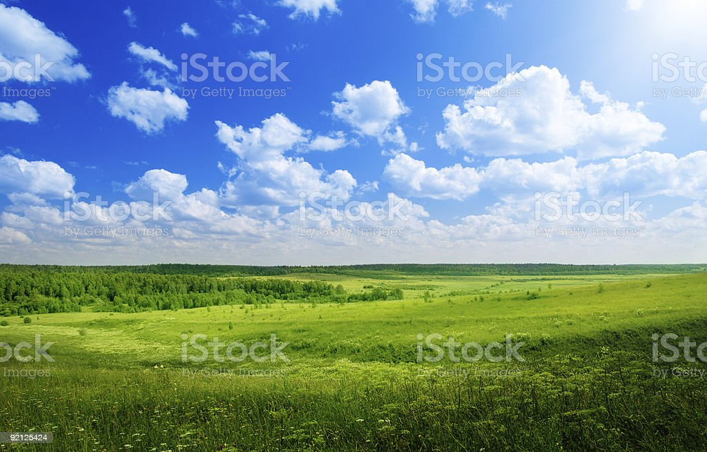 Panoramic view of green grass and sky royalty-free stock photo