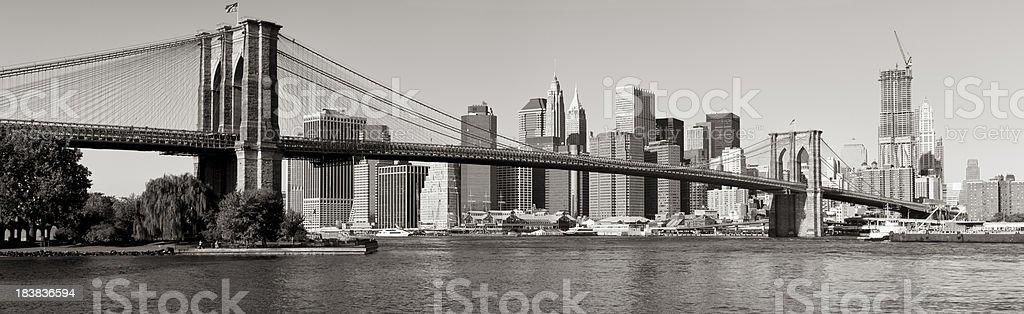 Panoramic View of Lower Manhattan and Brooklyn Bridge royalty-free stock photo