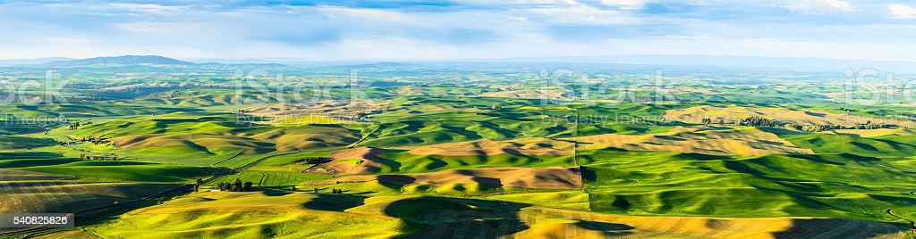 Panoramic View of Palouse Rolling Hills stock photo