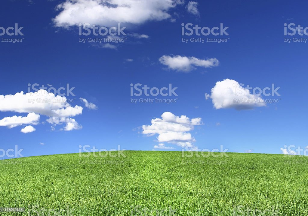 panoramic view of peaceful grassland royalty-free stock photo
