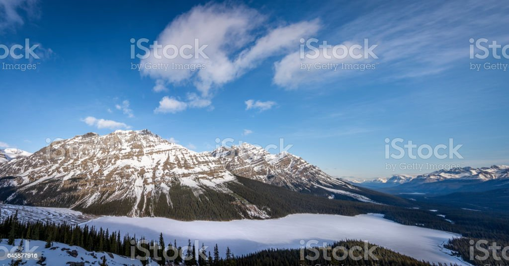 Panoramic view of Peyto Lake stock photo