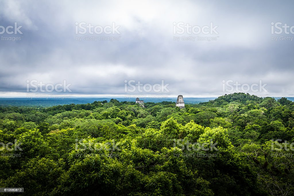 Panoramic view of rainforest and temples at Tikal - Guatemala stock photo