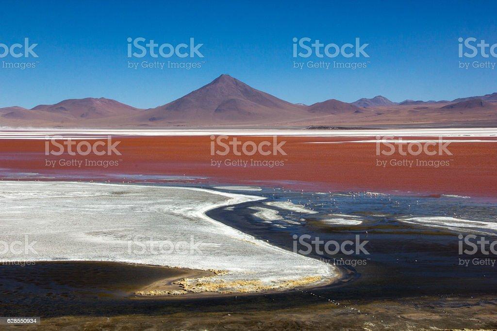 Panoramic view of Red lagoon (laguna roja) in Uyuni, Bolivia stock photo