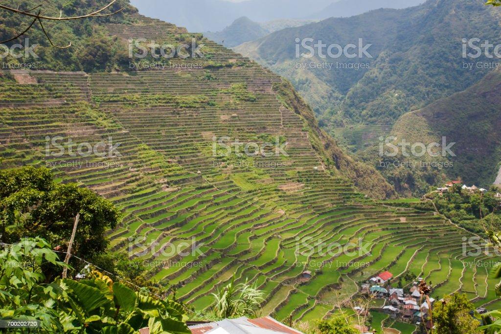 Panoramic view of the Batad rice field terraces, Banaue, Philippines stock photo