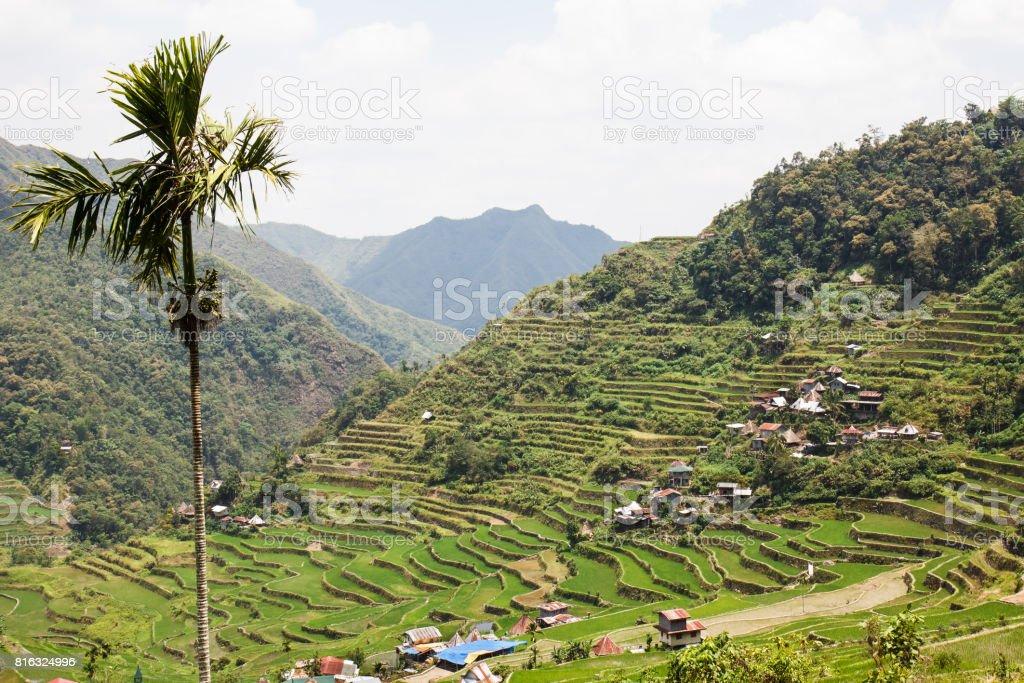 Panoramic view of the Batad rice terraces, Ifugao , Banaue, Philippines stock photo