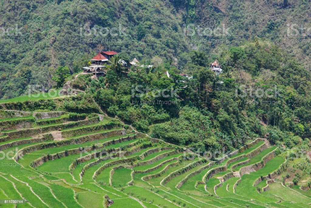 Panoramic view of the Batad rice terraces,Ifugao, Banaue, Philippines stock photo