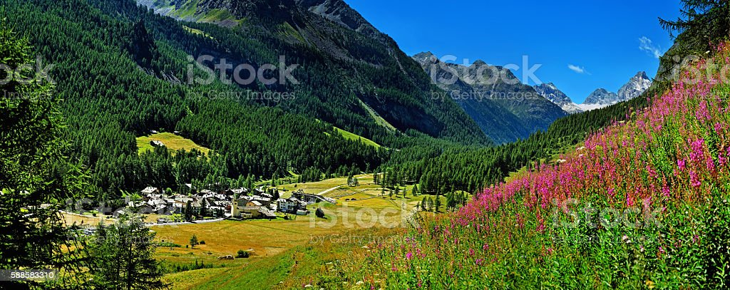 panoramic view on Rhemes Notre Dame with willow herb stock photo