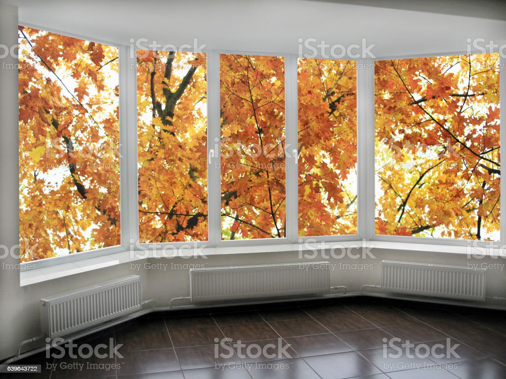 panoramic windows with view to oaken autumnale forest stock photo