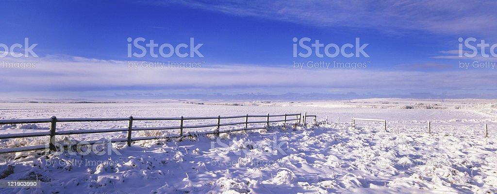 Panoramic Winter Frosty Farm stock photo