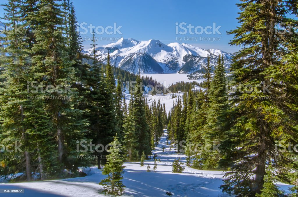 Panoramic winter landscape during snowshoeing expedition, Whistler, Canada stock photo