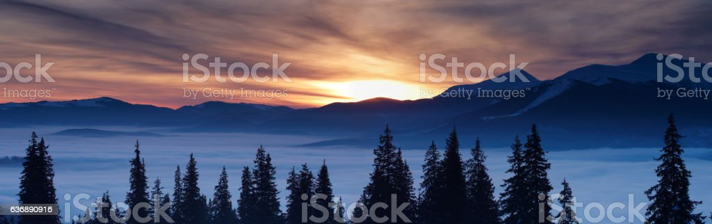 panoramic winter landscape stock photo